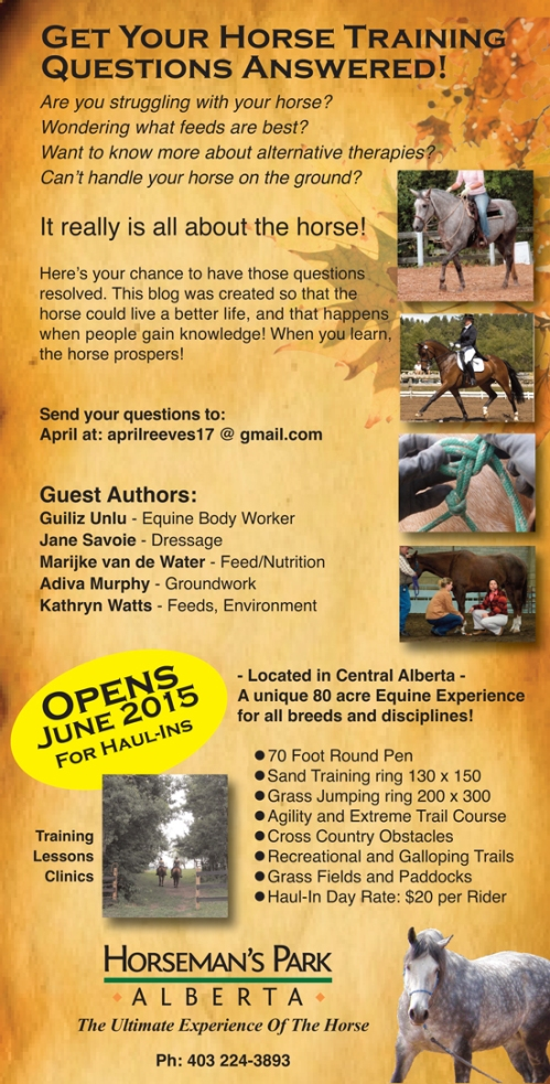 April Reeves Horse Training Questions and Answers Horseman's Park Alberta