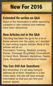 April Reeves Horse Training 2016 I will be traveling and teaching more clinics. Look for information on this site.
