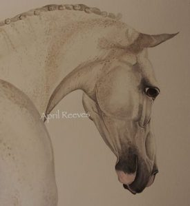 "April Reeves Equine Art ""The Healer"""