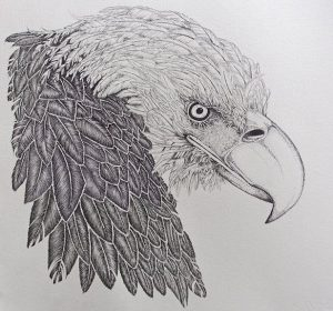 April Reeves Fine Art Print Bald Eagle