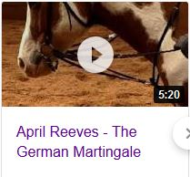 April Reeves Horsemanship German Martingale video Part 1